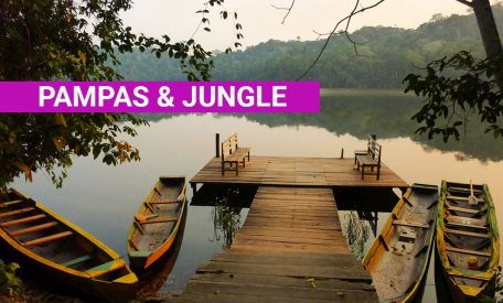 Amazon Rain Forest Tours Jungle & Pampas