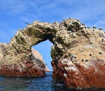 Ballestas Islands & Sand-Boarding Day Trip - Lima