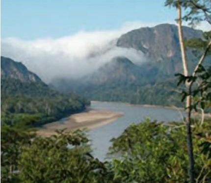 5-Day Jungle & Pampas (Bala Tours Ecolodge)