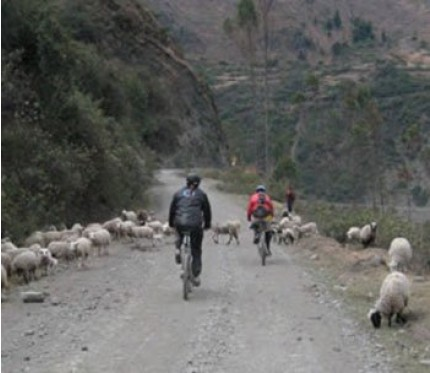 Lares Biking Full Day - Cusco