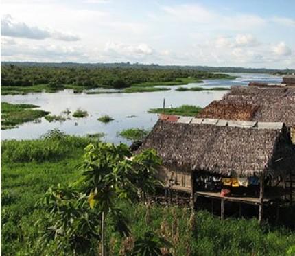 5-Day Jungle Tour - Iquitos