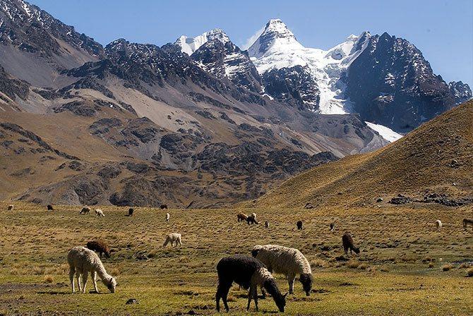 Tuni Condoriri Pico Austria Trek Bolivia