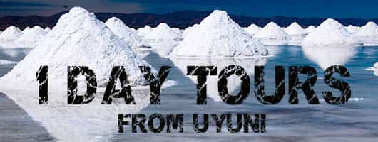Salar de Uyuni 1 Day Salt Flats Tours Bolivia