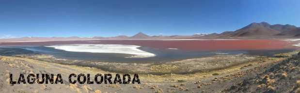 Salar de Uyuni Tours Laguna Colorada